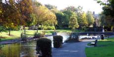 Ranelagh Park picture