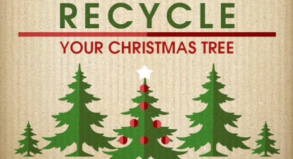 Christmas Tree Recycling - Christmas Tree Recycling EoghanMurphy.ie