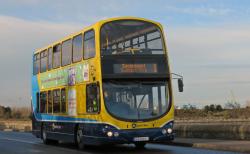 1 bus